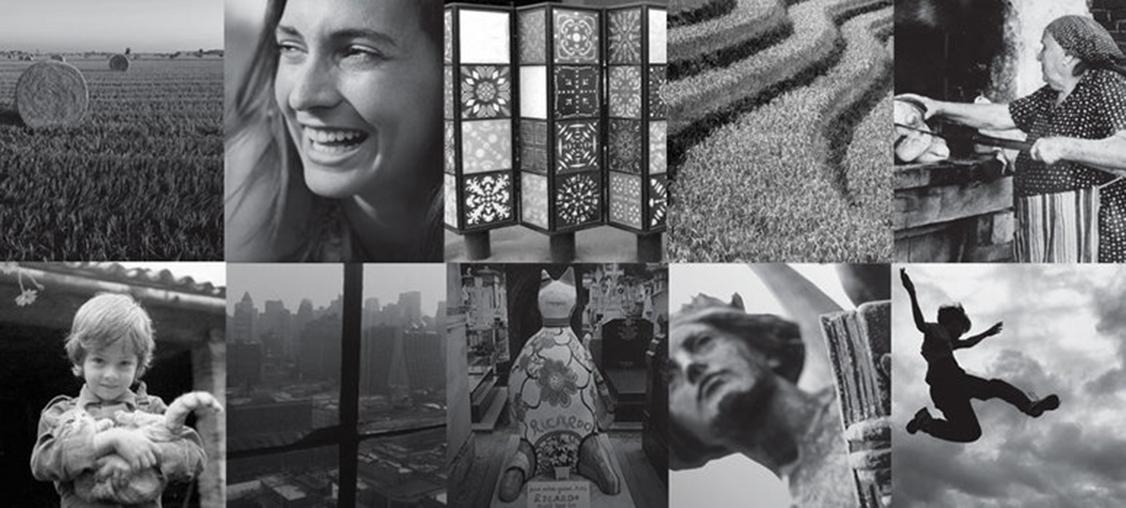 Davines-collage-2014