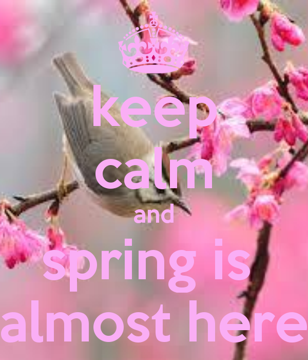 00c8ba315fc56 keep-calm-and-spring-is-almost-here - Limelight Hairdressing Clitheroe